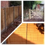 See all Garden Fencing