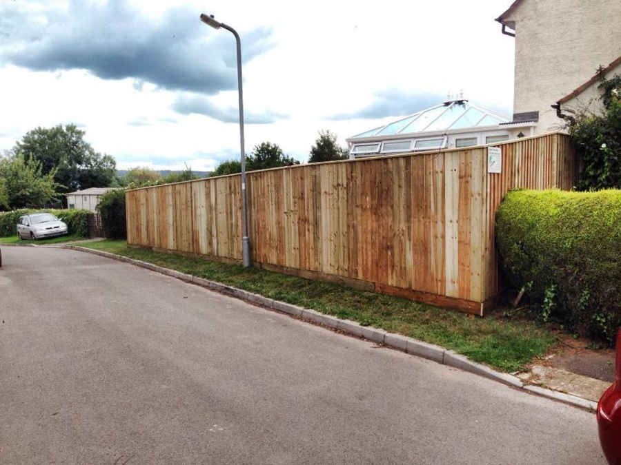 Hedge removed and replaced with fence